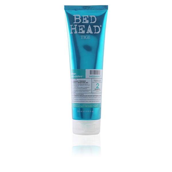 BED HEAD recovery shampoo 250 ml by Tigi