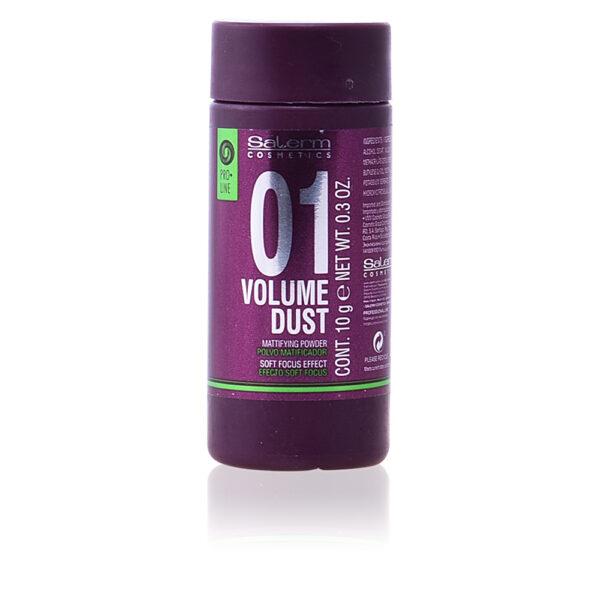 VOLUME DUST matifying powder 10 gr by Salerm
